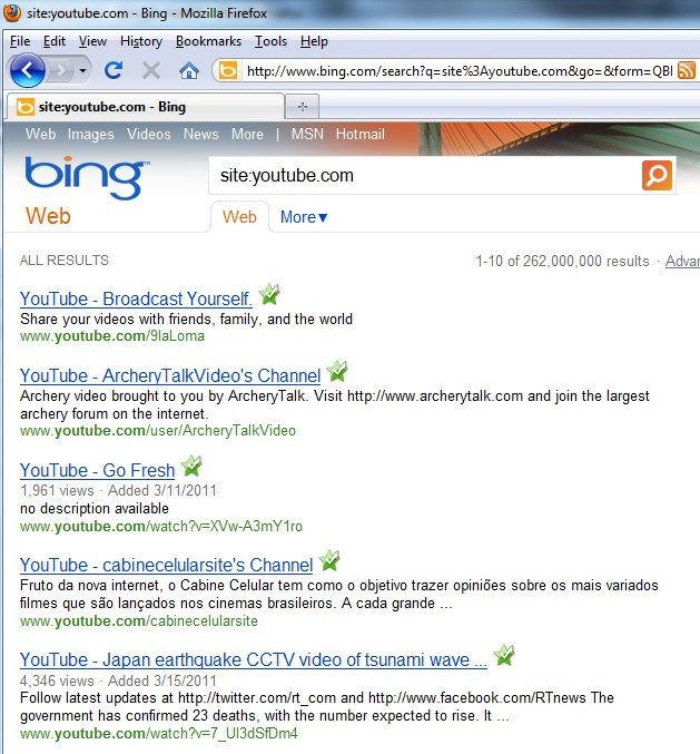Bing Check Indexed Links