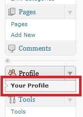 WordPress User Profile